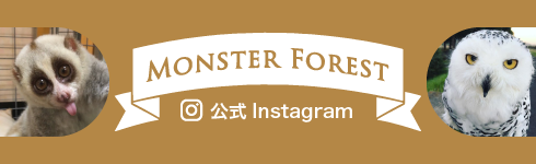 MONSTER FOREST 公式Instagram
